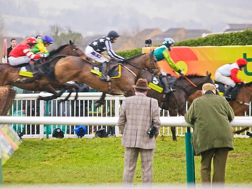 Cheltenham Gold Cup Race