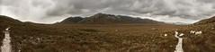 Cox's Bight Panorama, South Coast Track, Tasmania (mindsocket) Tags: panorama landscape hiking tasmania southcoast