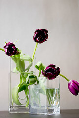 1003 flowers #10
