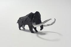 Mammoth (design by Miyajima Noboru) (joigami) Tags: blackranger powerrangers blackandwhite elephant iceage prehistoric mastodon mammoth sculpture design origami