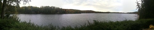 A Panorama of a Maine Lake (or... pond!)