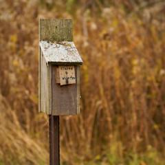 On the Way (Andrew Kufahl) Tags: autumn winter wisconsin nikon birdhouse 2009 sherwood highcliff d90 nikond90