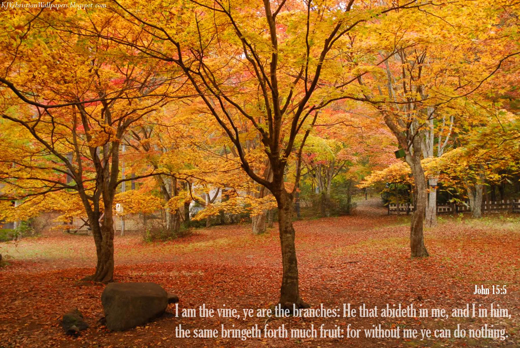 Autumn09-19