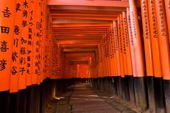 2009 11 6 Kyoto Trip 068 (spitfireap) Tags: red japan kyoto shrine inari pentax da dslr torii f28 fushimi apsc anawesomeshot k20d 1650mm justpentax