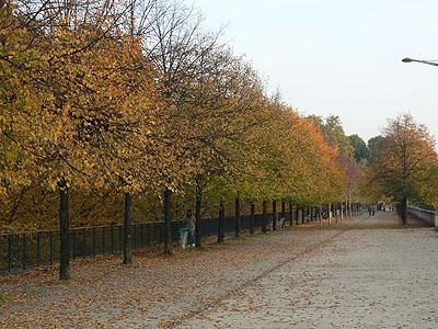 allée en automne à Bercy.jpg
