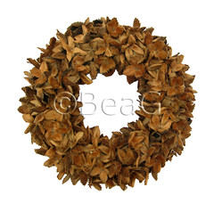 Beach Nut Thingy Wreath (Beukenootjesdingesen Krans) (Made by BeaG) Tags: brown design holidays belgium natural handmade unique decoration belgi wreath recycle decor krans bruin reuse reclaim repurpose recyclage beechnuts couronne tabledecoration doordecoration beag walldecoration hergebruik natuurlijk naturalmaterials uniquedesign christmasdesign beukenootjes naturalcrafts naturalwreath creativechristmas natuurlijkematerialen beukenootjesdingesenkrans natuurlijkekrans driednaturalmaterials designedandmadebybeag uniekontwerp ontworpenengemaaktdoorbeag craftingwithnaturalmaterials knutselenmetnatuurlijkematerialen gedroogdenatuurlijkematerialen beachnutthingywreath hergebruiktenatuurlijkematerialen creativechristmasdecoration designerwreath designerwreaths