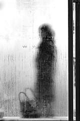 Bus stop (96dpi) Tags: winter bw woman bus glass silhouette wall bag frost sigma stop dew sw tau frau potsdam glas windowpane haltestelle tasche scheibe 150mm handtasche stadtmöbel sigmaf28exmacro