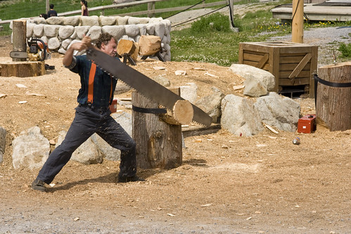 Coupage de bois
