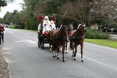 2009 Southern Pines Carriage Parade (sandhillsDig.com) Tags: shopping cuisine nc calendar southern eat dine information west downtown restaurant reviews north southern event events carolina village local music do lakes community information end things calendar seven guide pinehurst weddings pines visitor business dinner golf events lunch theatre pinehurst upcoming restaurants shops concerts sports movies sandhills aberdeen advertising dine
