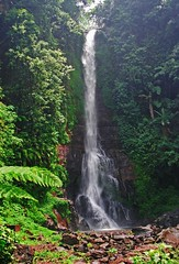Bali Waterfall (ERICINWALES) Tags: bali plants mountains hot wet leaves waterfall asia southeastasia damp humidity jungles