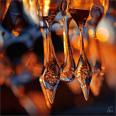 crystal palace (Sandra Bartocha) Tags: winter cold ice sonnenuntergang crystal eis icicles icecrystals eiszapfen icicled sundow eistropfen csandrabartocha wwwbartochaphotographycom