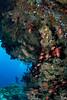 Cocoa Corner (Lea's UW Photography) Tags: underwater maldives malediven unterwasser tokina1017mm leamoser