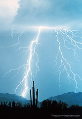 Lightning Rain (Striking Photography by Bo Insogna) Tags: decorations arizona nature rain weather cards photography landscapes desert framedart framed galleries gifts photographs monsoon posters prints bolts lightening scenics extremeweather stockimages thunderstorms saguaros stormchasers lightningstrikes strikingphotography lightningimages lightningphotography lightningstorms naturethroughthelens boinsogna thelightningmancom strikingphotographycom thelightningman cloudslightningstorms jamesinsogna framedprintsstockphotography