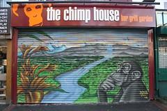 The Chimp House (Doidge) Tags: uk streetart canon bristol graffiti photo flickr picture photograph 1855mm 2010 ktf gloucesterroad flickrcom riks bishopston 450d sepr