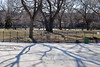 -- (felix.castor) Tags: nyc winter fence shadows ev february monday tsp sunnyday 020810 tompkinssq sometrees nycsky