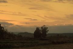 <><><>Colori e tramonti di Sardegna<><><>