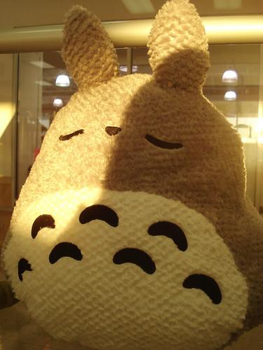 Totoro back