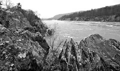 Great Falls National Park after Flooding Rains and Snow Melt (TDLphoto) Tags: statepark travel autumn trees winter cliff usa cold fall nature water rock fog stone river outside outdoors photography virginia washingtondc canal waterfall dc nationalpark spring dangerous md flooding day unitedstates flood nps hiking extreme greatfalls foggy scenic maryland tranquility rapids muddywater erosion va perch dcist potomac ravine swift bluffs hazardous potomacriver crevasse current turning mothernature scenics roaring cataract bedrock cascading snowmelt eroded rockformation runoff igneous metamorphic fairfaxcounty capitalcities geologic traveldestinations environmentalissues mathergorge patowmackcanal lookingover welovedc