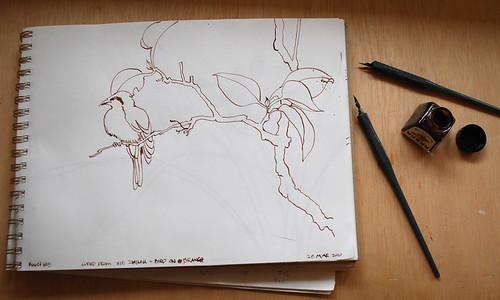 20100328 ink dwg 1