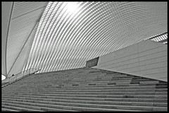 Liège / Luik / Lüttich (Bert Kaufmann) Tags: blackandwhite bw lines station architecture stairs belgium gare zwartwit curves shapes belgië bahnhof stairway explore calatrava blacknwhite escalier luik santiagocalatrava architectuur liège lijnen wallonie vormen escales lüttich trappen explored guillemins liègeguillemins gareliègeguillemins luikguillemins stationluikguillemins