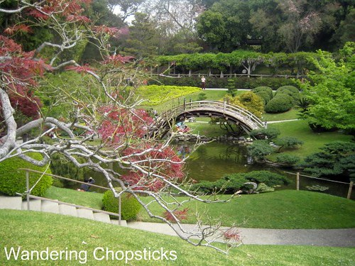 The Huntington Library, Art Collections, and Botanical Gardens (Japanese Garden) (Spring) - San Marino 7