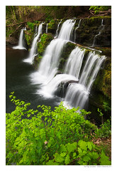 Spring Cascades (Adam Edwards Photography) Tags: uk longexposure green water leaves wales waterfall nationalpark spring smooth falls breconbeacons foliage cascades lush silky waterscape adamedwards sgwdypannwr