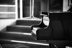 piano (mac d-ski photography) Tags: music blackwhite interesting bokeh piano classicalmusic nikond90 nikkor55300 maciekdaczkowski macdskiphotography nikond90nikkor55300