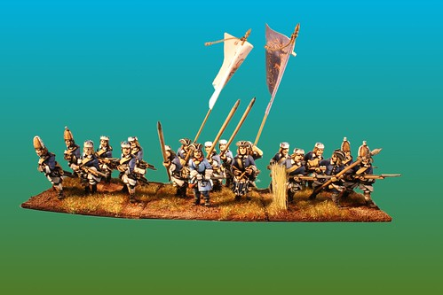 Västerböttens regiment