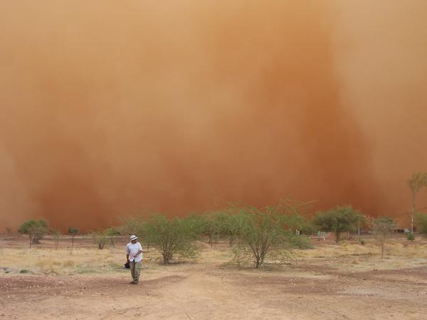 441840-Dust-storm-3-0