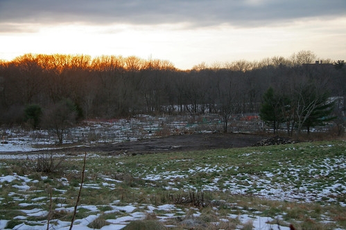 sunset over the new dirt