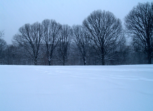 Wyman Park in the snow