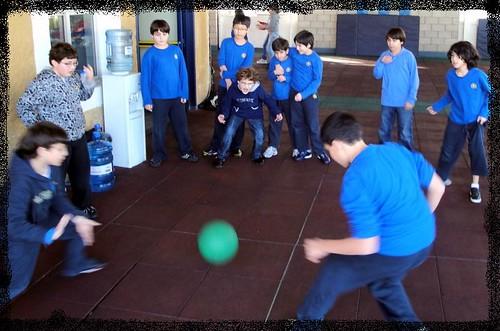 Argue Ball