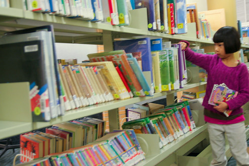 Qiqi EGR Public Library December 31, 20095