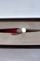 Red pen stuck between the pages of a boo by Horia Varlan, on Flickr