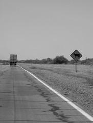 A road photography 4 (carlos_ar2000) Tags: road santafe argentina ruta truck buenosaires traffic camino country perspective line diagonal sanluis route camion mendoza cordoba campo perspectiva transito signal linea seal diagonally