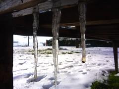 (starsurvivor) Tags: neve inverno tavolo giardino ghiaccio