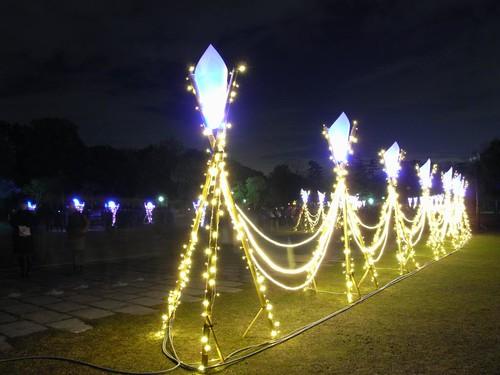 なら瑠璃絵@奈良公園-09