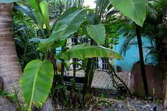 PuertoRico_2271