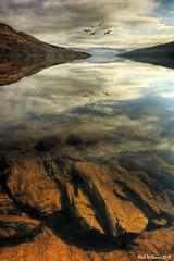 Katrine Rocks (1) (Shuggie!!) Tags: reflection water landscape scotland williams karl loch trossachs hdr katrine aberfoyle theunforgettablepictures saariysqualitypictures karlwilliams yourwonderland