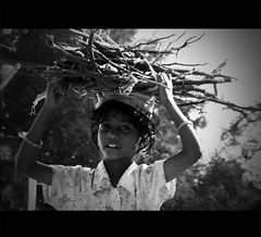 Burden of life (VinothChandar) Tags: life india work child labor happiness labour chennai burden tamilnadu kanchipuram workload kancheepuram