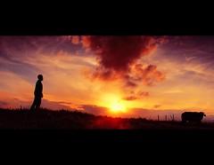 Stay away from me (hey.poggy) Tags: sunset red colour silhouette buffalo nikon human malaysia af terengganu nikkor1855mm d80 manir mrhuggies aminfitri pogyhuggies alifminyanun blendingcolour