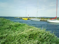 boats (cristofer79) Tags: blue naturaleza lighthouse lake plant france color colour verde green planta nature water azul jaune plante landscape faro lago vent boat canal pond agua eau barca barco wind dam lac paisaje viento vert bleu amarillo cielo estanque bateau paysage francia aire phare dike couleur barque herbe tang hierba digue marseillan
