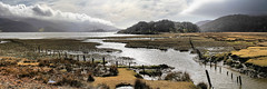 Mawddach at Caerdeon (MarkEllis) Tags: panorama cloud water wales fence bright sunny panoramic estuary reflect marsh posts snowdonia tidal channels mawddach caerdeon markellisphotography potysea potylan