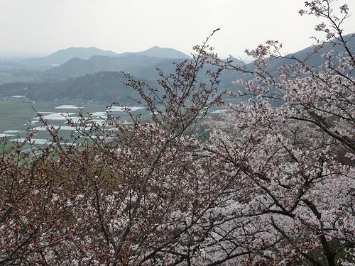 rikunomatsushima