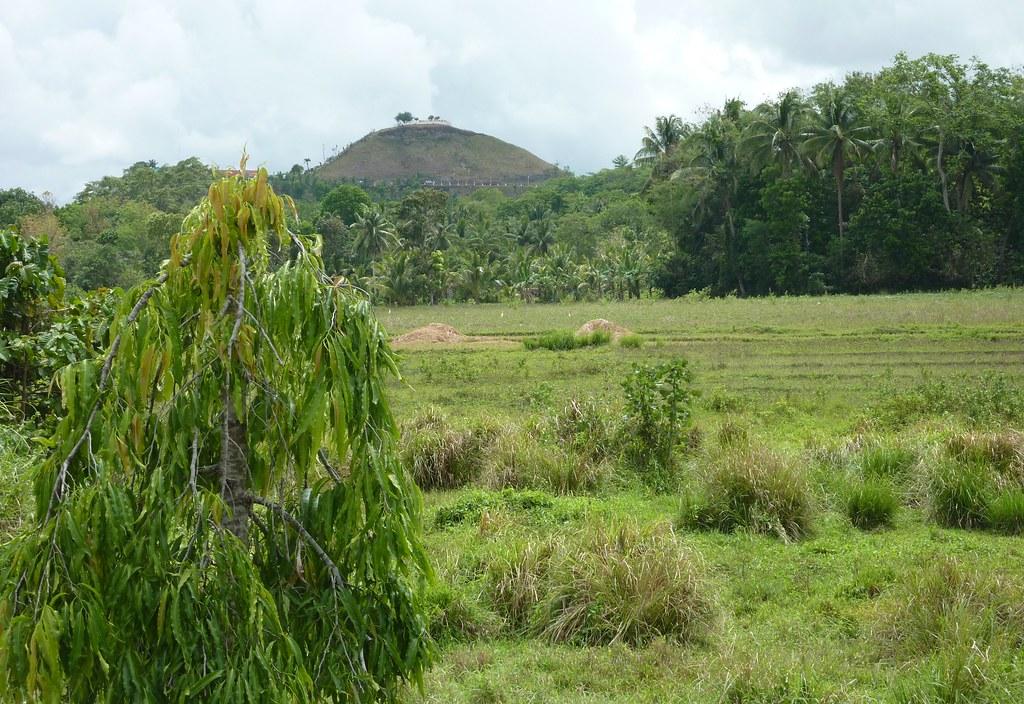 Bohol-Talibon-Chocolate Hills (20)