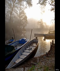 Boats in the fog (alfvet) Tags: beautiful sunrise boats nikon alba barche 1001nights riflessi vigevano d60 greatphotographers parcodelticino specialtouch specialpicture aplusphoto theunforgettablepictures theunforgettablepicture platinumheartaward theperfectphotographer goldstaraward tup2 flickrestrellas veterinarifotografi quarzoespecial nikonflickraward nikonflickrawardgold platinumbestshot thebestofcengizsqueezeme2groups sailsevenseas masquemilpalabras mygearandme mygearandmepremium mygearandmebronze mygearandmesilver mygearandmegold mygearandmeplatinum mygearandmediamond ringexcellence dblringexcellence tplringexcellence artistoftheyearlevel4 aboveandbeyondlevel4 aboveandbeyondlevel1 flickrstruereflection1 flickrstruereflection2 flickrstruereflection3 flickrstruereflection4 flickrstruereflection5 flickrstruereflection6 flickrstruereflection7 artistoftheyearlevel5 eltringexcellence flickrstruereflectionexcellence artistoftheyearlevel6 aboveandbeyondlevel2 aboveandbeyondlevel3 boatsecl vigilantphotographersunite vpu2 vpu3 vpu4 vpu5 vpu6 vpu7 vpu8 vpu9 vpu10