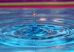 Spout (Pensans) Tags: pink blue colour macro water canon purple flash stripe fast 100mm flashphotography shutter droplet splash collision splashing waterart waterdroplet watersculpture canoneos30d