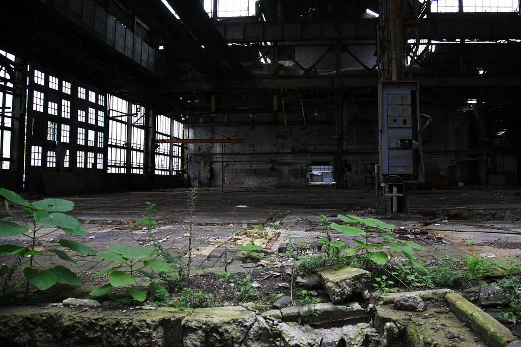 BrooklynNavyYard-Interiors-creditBenMuessig