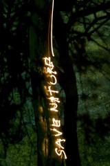 save nature (abels.) Tags: old blue light tree muro verde green nature yellow azul wall night design photo shadows branches natureza save shades velha amarelo trunk noite arvore tronco sombras parede ramos abels salvem abelsaraiva