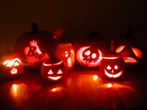 Oct 26 2009 Pumpkins alight